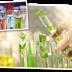 Περιβαλλοντικές Χημικές Αναλύσεις
